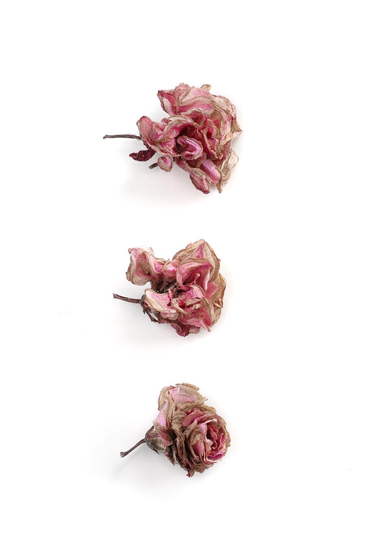 992 flores