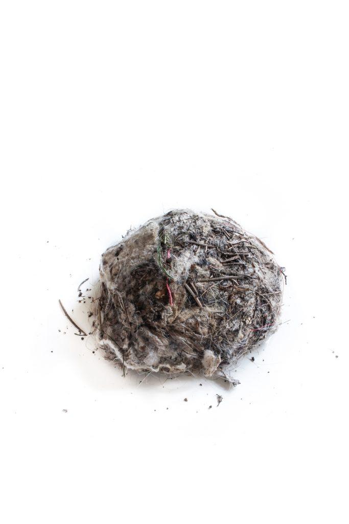 674 nido