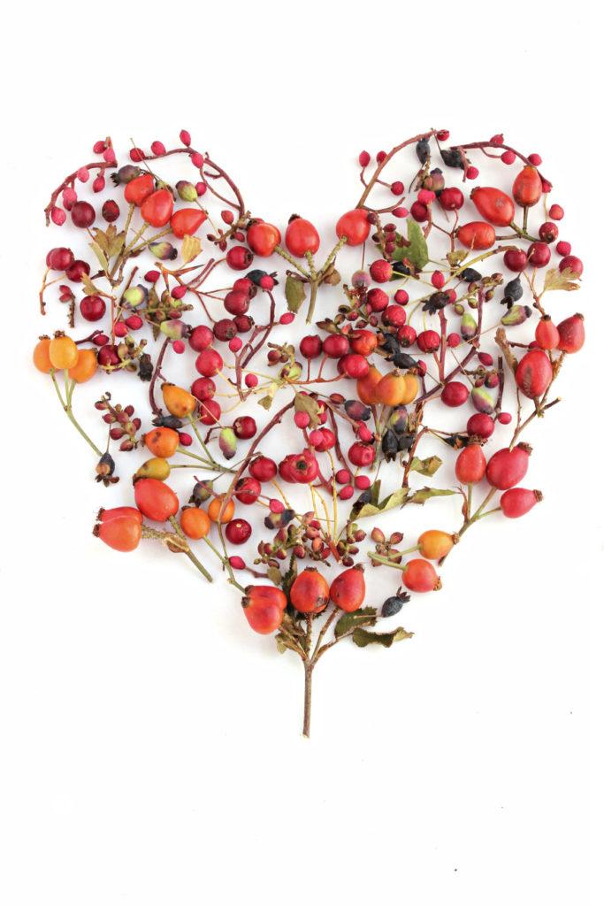 237 corazón otoño