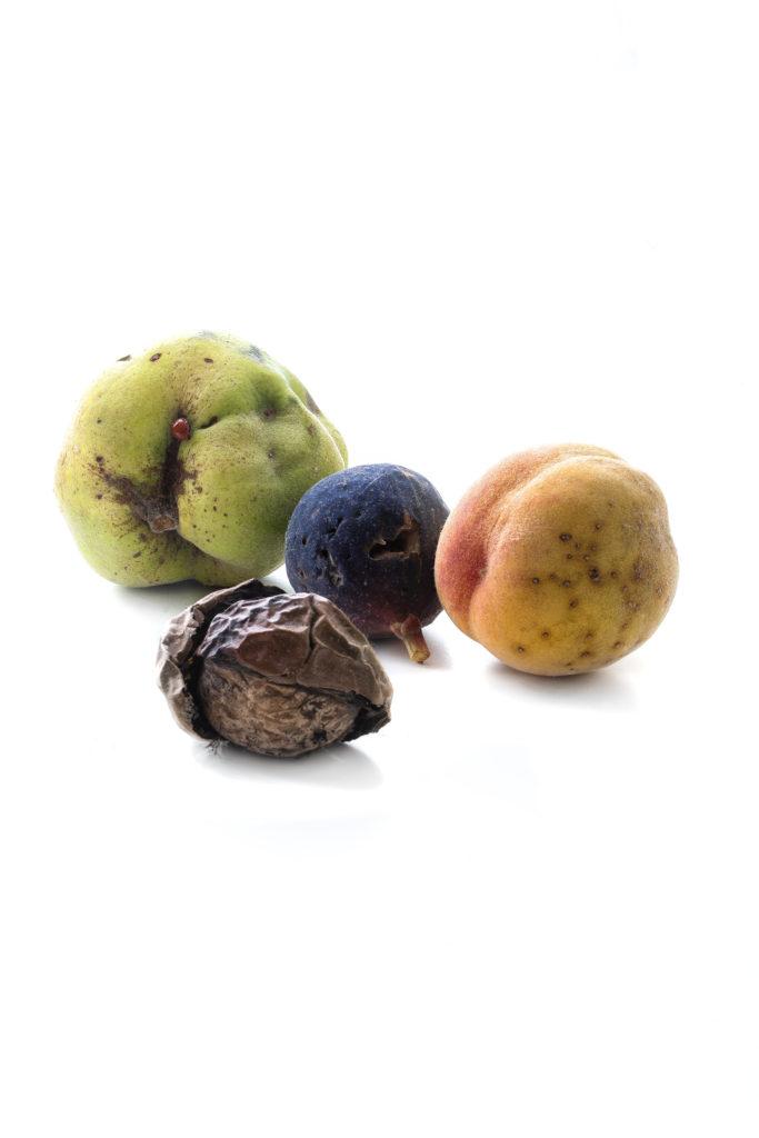 1023 frutas