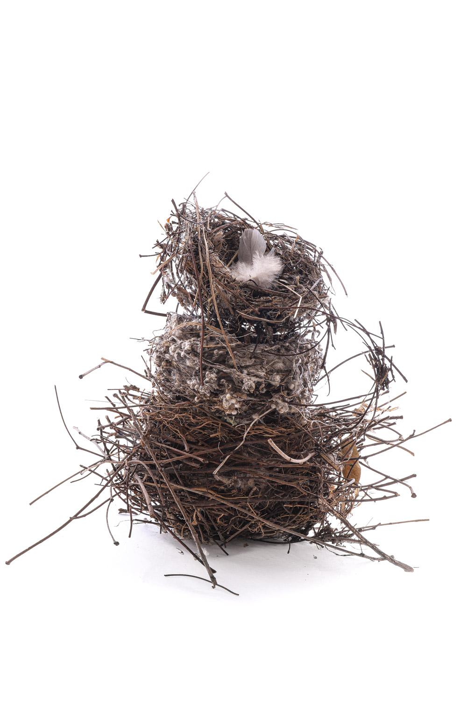 tres nidos