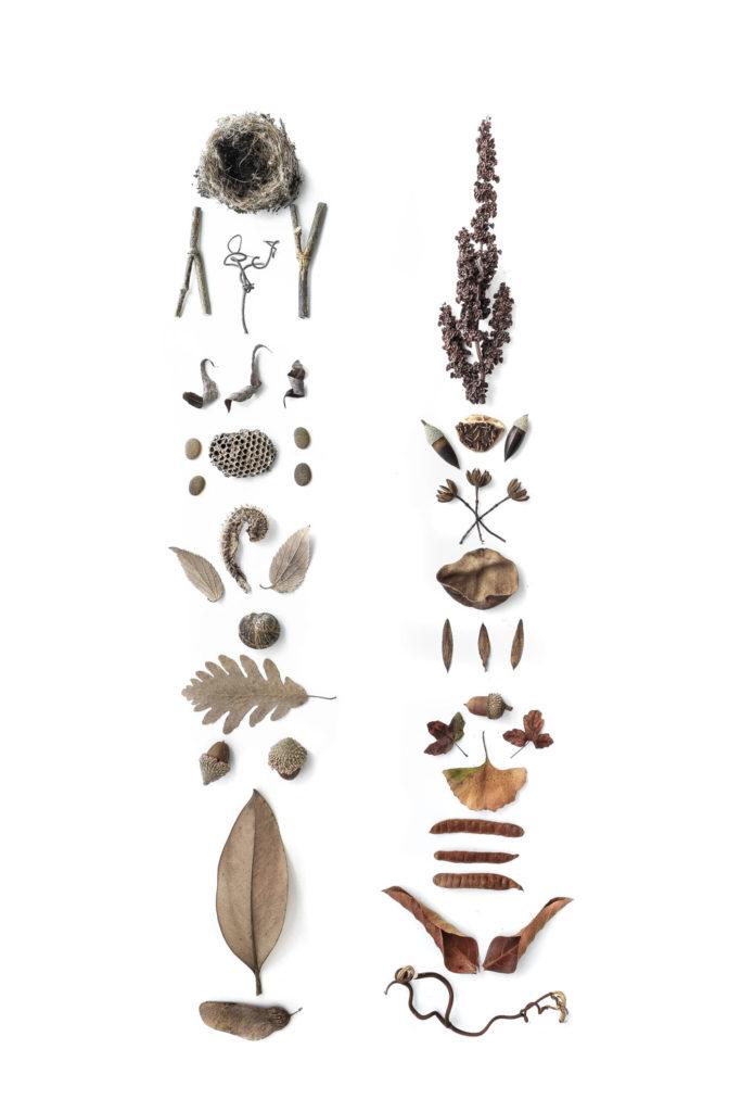 1322 colección