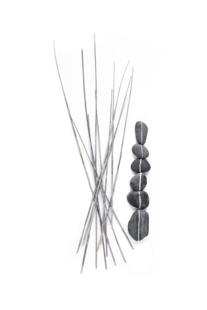 1359 piedras palos