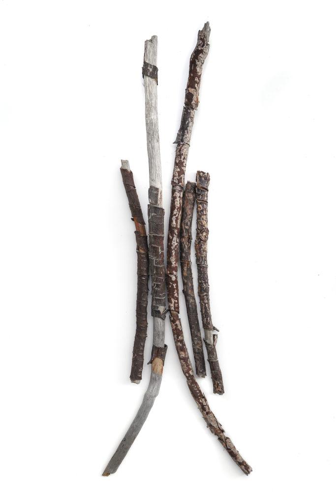 1552 palos quemados