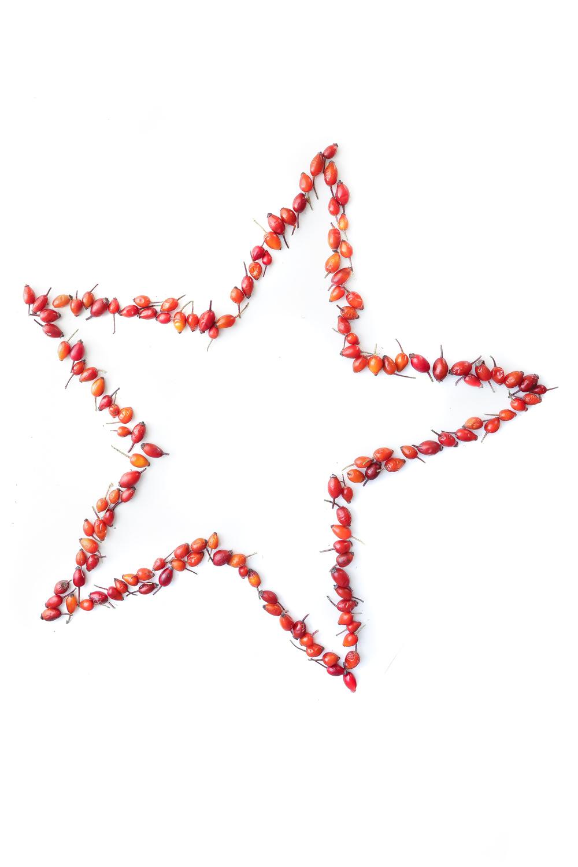 1593 estrella