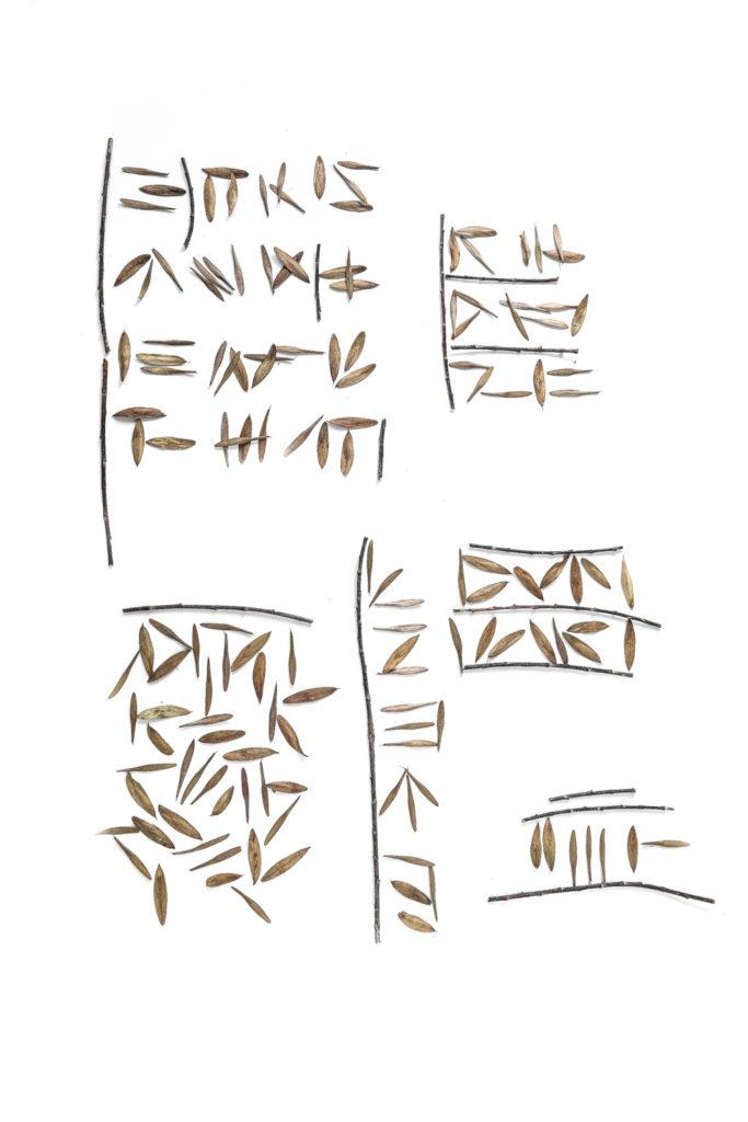 1652 escritura_
