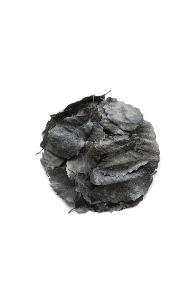 1671 hojas negras