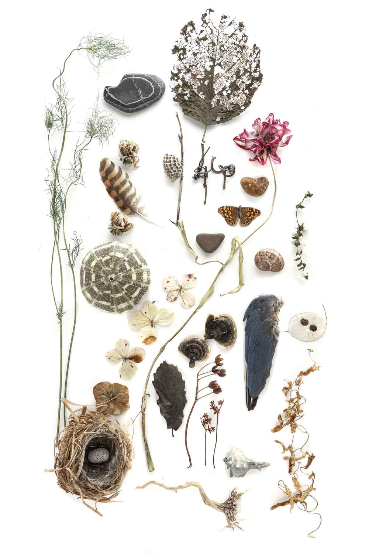 1712 colección-3