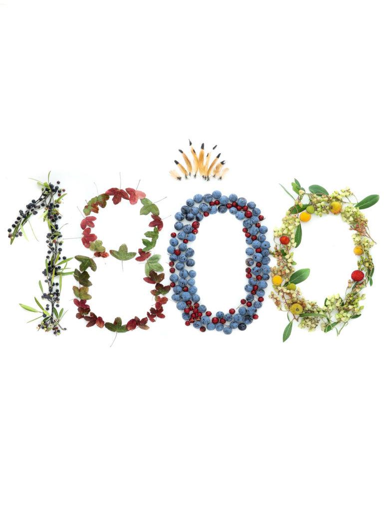 1800 fotos